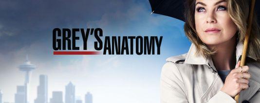 greys-anatomy-saison-12-bilan-critique-brain-damaged-image-une